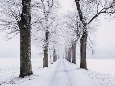 L'hiver est à nos portes !